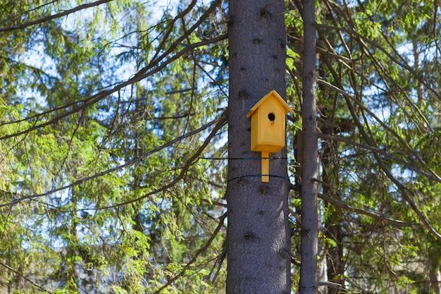 Altes gelbes vogelhaus auf einem baum, vogelsorgfalt