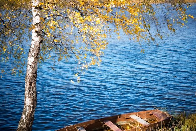 Altes holzboot im herbstpark, bäume, abgefallene blätter und teich, herbstlandschaft