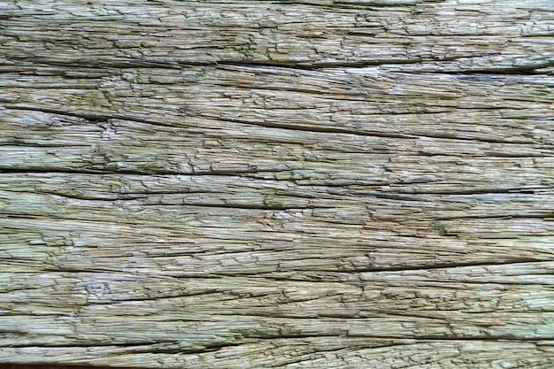 Altes holzbrett. textur eines verblassten baumes