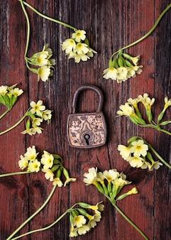 Altes rostiges vorhängeschloss um wilde gelbe schlüsselblumen des frühlinges auf einem rustikalen hölzernen hintergrund.
