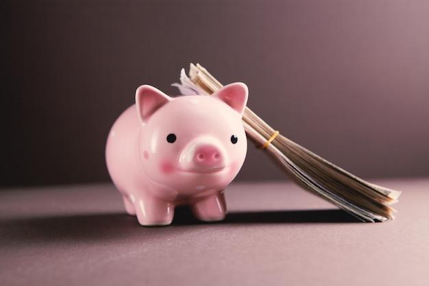 Amerika dollar banknoten geld in sparschwein