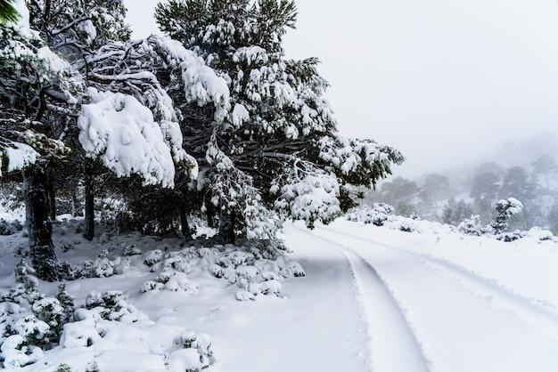 An einem wintertag schneebedeckte straße am berg