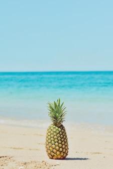 Ananas am strand.