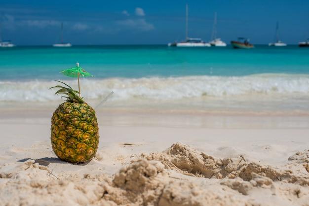 Ananas im paradies