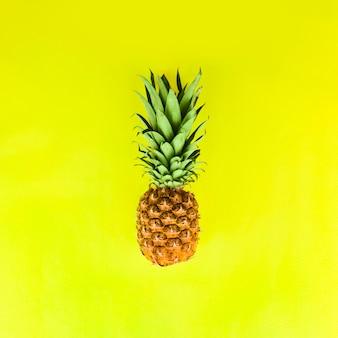 Ananas mit grünen blättern