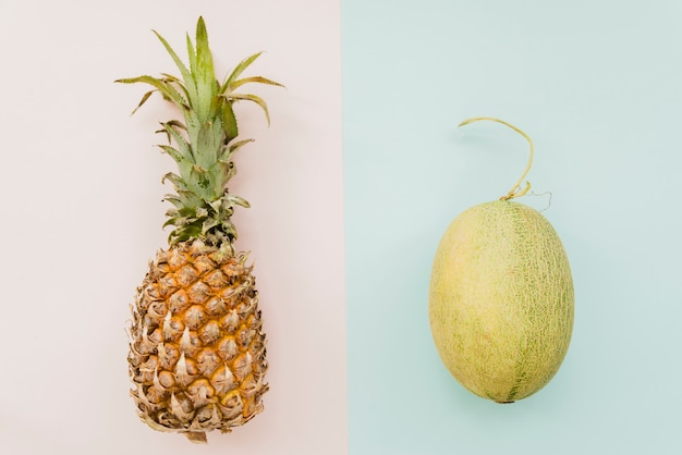 Ananas und melone auf mehrfarbigem hintergrund