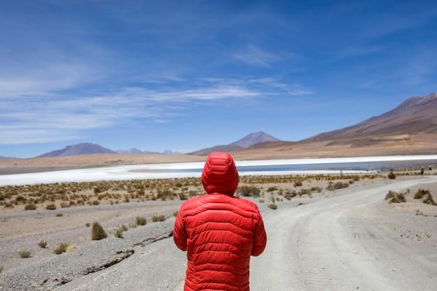 Andu fauna national reserve von eduardo avaroa in bolivien