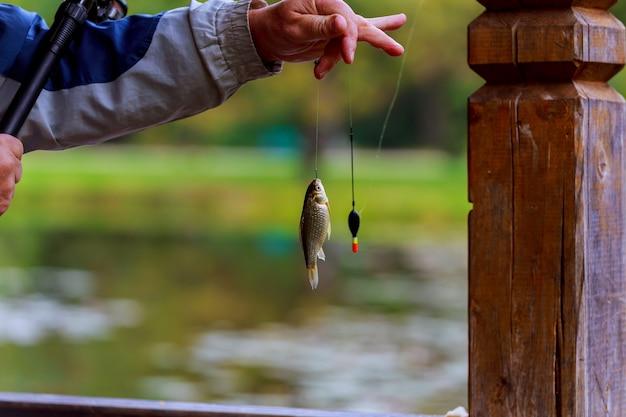 Angelrutenseefischer-mannsommer locken das sonnenuntergangwasser an, das im freien ist