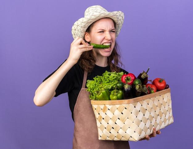 Angespannte junge gärtnerin mit gartenhut, die gemüsekorbbissen von pfeffer isoliert auf blauer wand hält