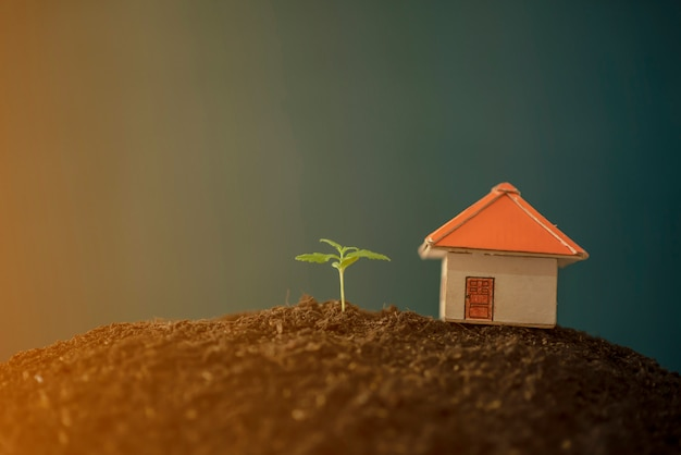 Anlage wächst vom einsparungsgeld für investitionsgeschäftskonzept.