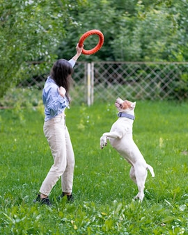 Anonyme brünette frau trainiert amerikanischen pitbull-terrier mit reifen im park petrenthood
