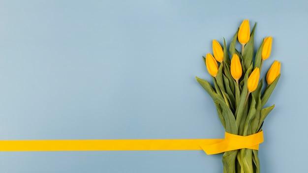 Anordnung der frühlingsblumen mit kopierraum