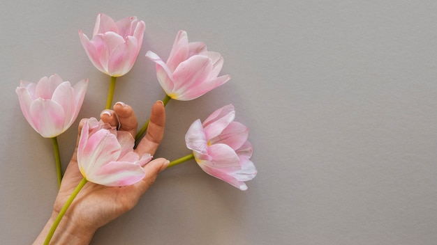 Anordnung der schönen blühenden blumen