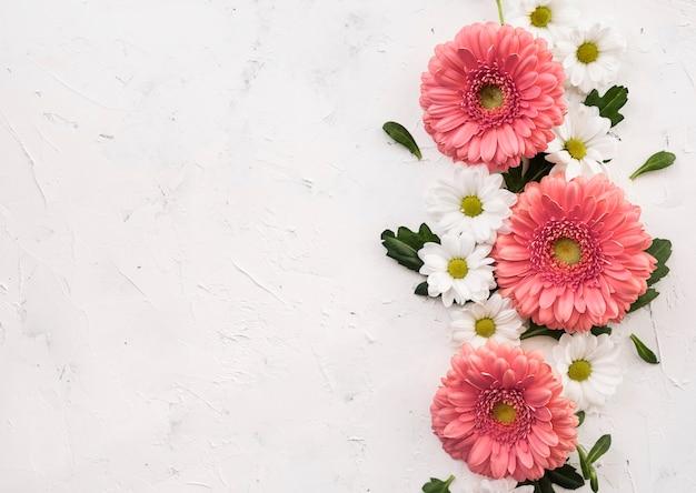 Anordnung für draufsicht der rosa gerbera- und gänseblümchenblumen
