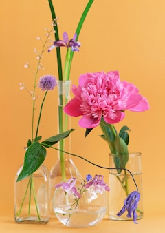Anordnung verschiedener blumen, iris, aquilegia, pfingstrose in glasvasen