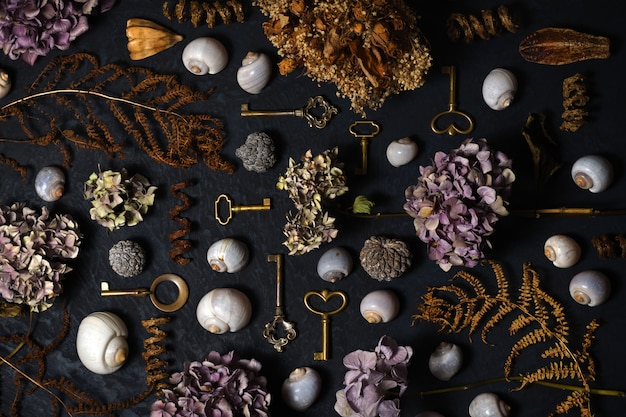 Anordnung von vintage-schlüsseln, getrockneten blumen, pflanzen und muscheln