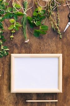 Ansammlung grünpflanzezweige nahe scheren und fotorahmen