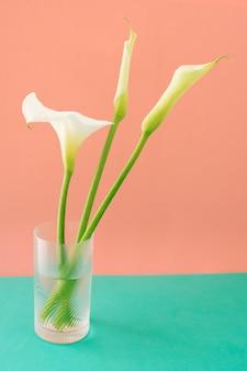 Ansammlung weiße blumen im glas mit wasser