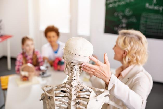 Anschauungsmaterial. selektiver fokus eines skeletts, das für einen biologieunterricht verwendet wird