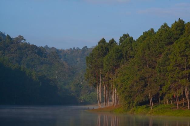 Ansicht der bäume und der seen in nord-thailand.