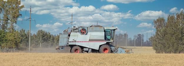 Ansicht der erntemaschine, die weizen schneidet, getreide sammelt