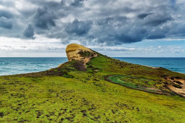 Ansicht der hohen sandigen klippe bedeckt mit gras und wellen des pazifischen ozeans am tunnelstrand, neuseeland