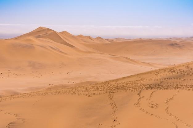 Ansicht der namibwüste von düne 7 nahe swakopmund in namibia in afrika.