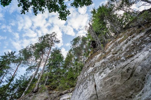 Ansicht der sietiniezis klippe und des bewölkten himmels, lettland. gauja-nationalpark. untersicht.