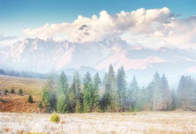 Ansicht der zeit der bergspitzen im frühjahr in den alpen