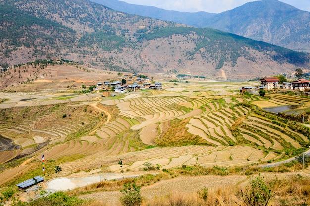 Ansicht des bhutanischen dorfs und der terrassen bei punakha in bhutan
