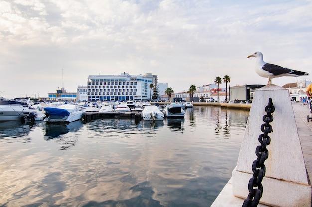Ansicht des jachthafens der faro-stadt gelegen in der algarve, portugal.