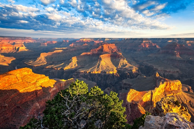 Ansicht des morgenlichts am grand canyon, arizona, usa