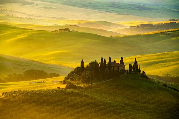 Ansicht des schönen hügeligen toskanischen feldes im goldenen morgenlicht