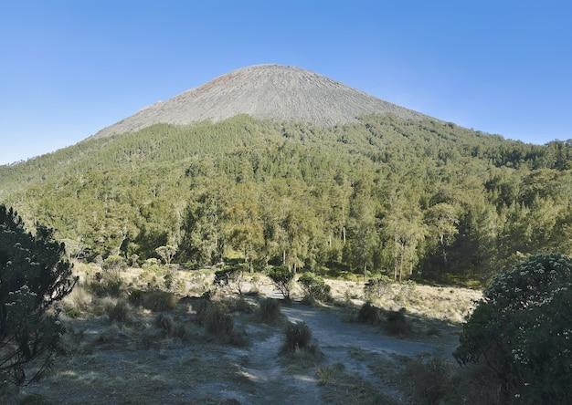 Ansicht des semeru berges gesehen von kalimati