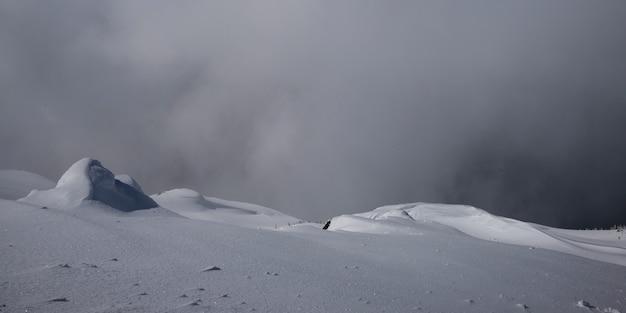 Ansicht des snowcapped berges, pfeifer, britisch-columbia, kanada