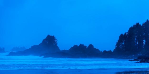 Ansicht des strandes, nationalpark pacific rim reserve, tofino, vancouver island, britisch-columbia, kanada