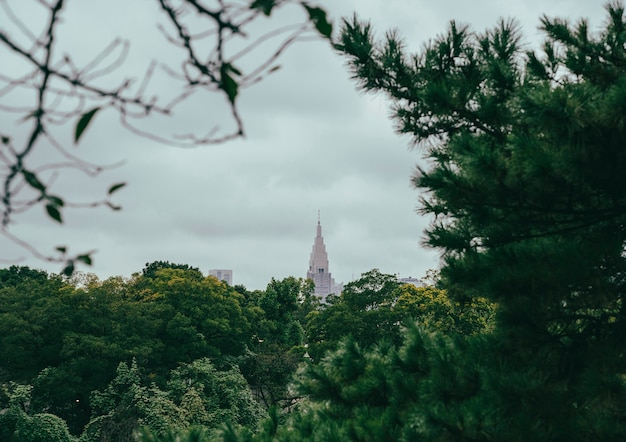 Ansicht des wolkenkratzers in der stadt von der vegetation