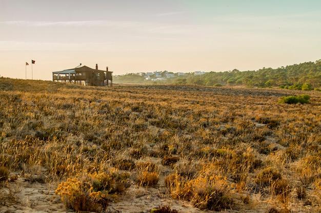 Ansicht einer szenischen ansicht des sonnenuntergangs einer hölzernen bar auf stranddünen der algarve, portugal.
