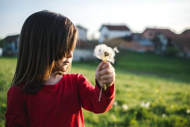 Ansicht eines kindes, das eine rote bluse trägt und löwenzahn in einem feld während an einem sonnigen tag bläst