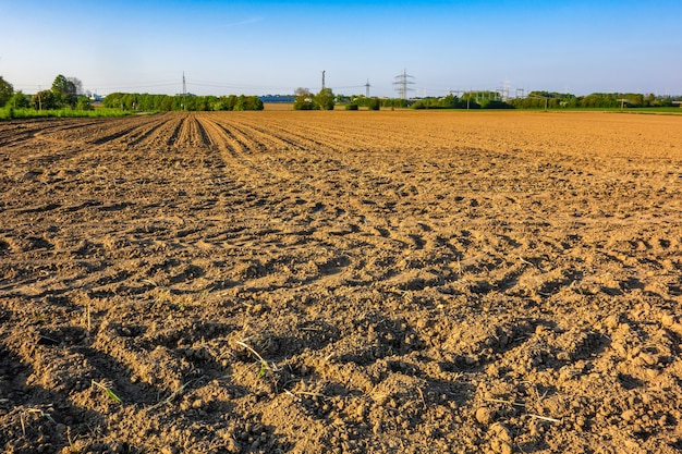Ansicht eines landwirtschaftlichen feldes in einem ländlichen gebiet, das an einem hellen sonnigen tag gefangen genommen wird