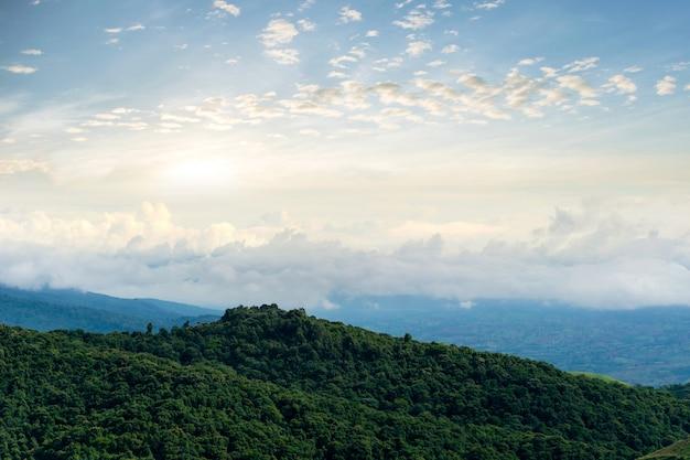 Ansicht morgen berg himmel und nebel phu tubberk thailand