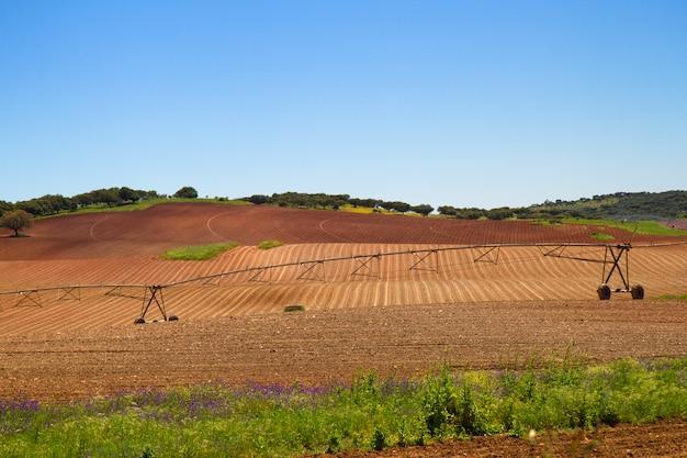 Ansicht über braunes landwirtschaftsfeld und blauen himmel