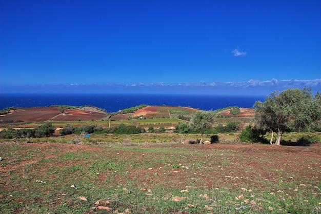 Ansicht über mittelmeerküste in algerien, afrika
