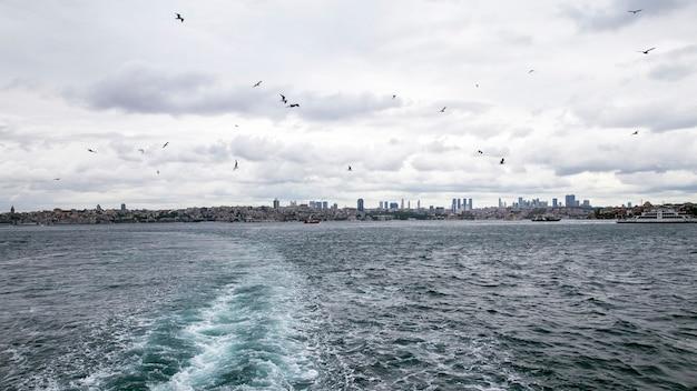Ansicht von istanbul von einem schiff bei bewölktem wetter, fliegenden möwen, wellen und schaum als spur vom boot, türkei