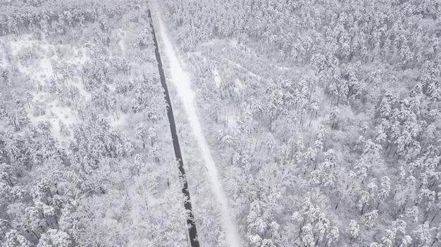 Ansicht von oben nach unten des waldes im winter. winterlandschaft im wald. über skispur im winterwald fliegen. ansicht von oben nach unten der skistraße. drohne folgen der gehenden frauenskifahrerin an der skispur. winterländer