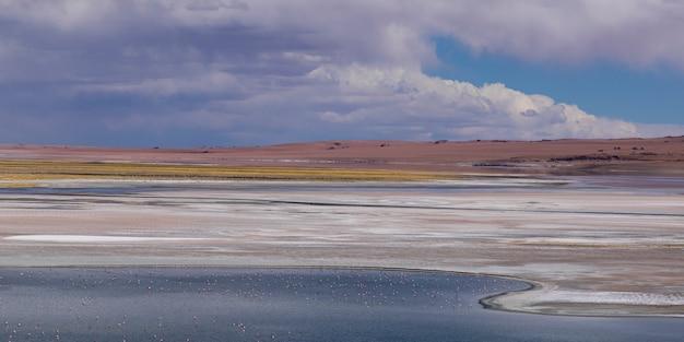 Ansicht von tara-salz-ebene, los-flamenco-nationales reserve, san pedro de atacama, el loa-provinz, antof