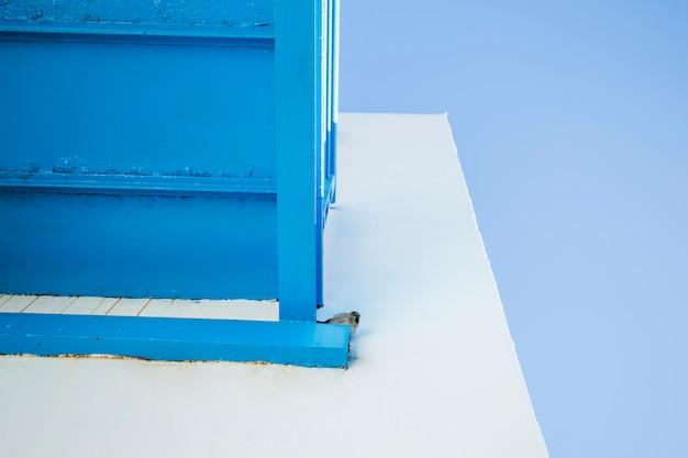 Ansicht von unten kleiner vogel auf dem balkon