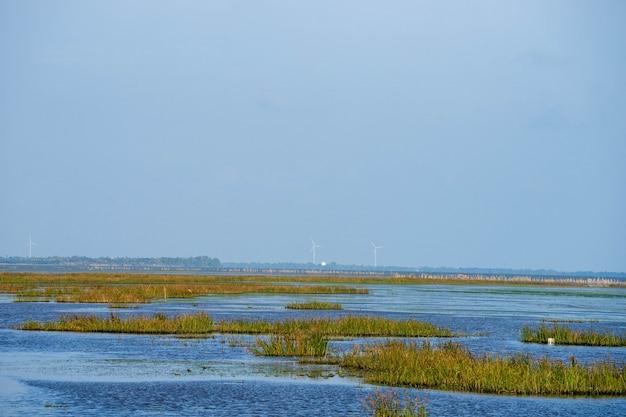 Ansicht von windkraftanlagen vom abstand vom see mit blauem himmel.