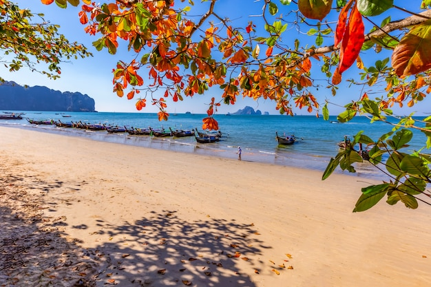Ao nang beach und das morgenlicht