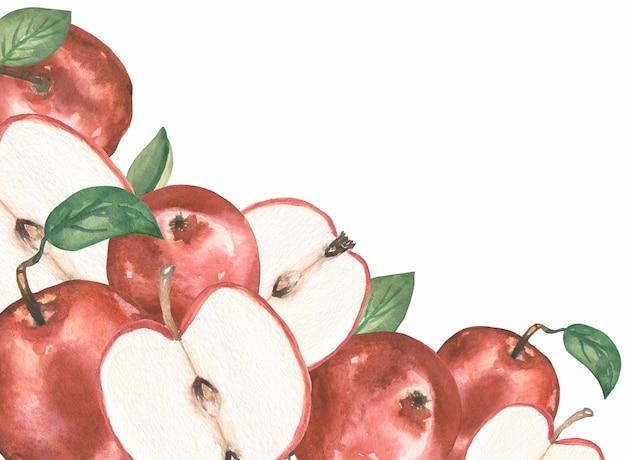 Apfel clipart, aquarell roter apfel rahmen, bio botanische obst clipart, gartenernte, hochzeitseinladung, textildruck, logo-design